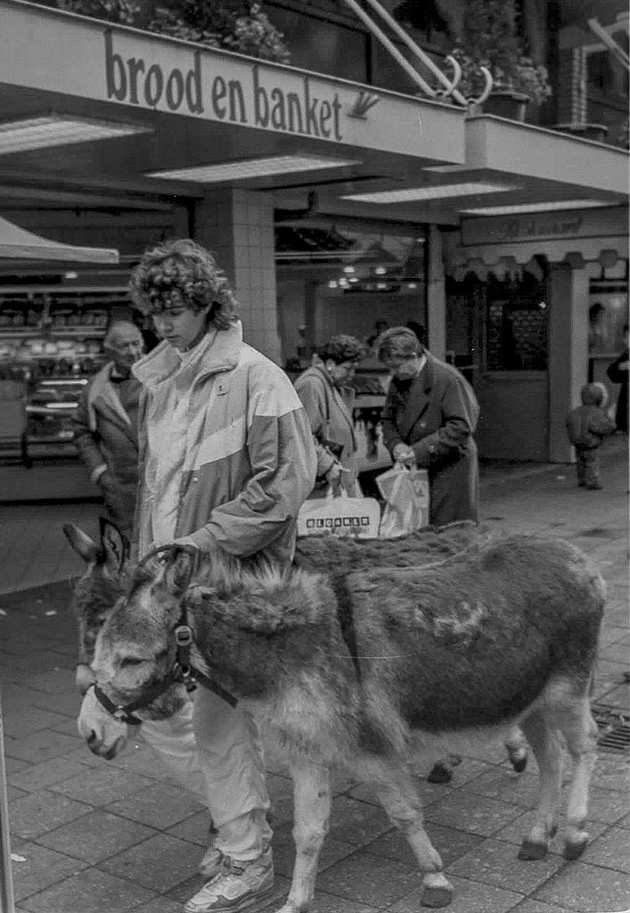 Ezels bij de bakker (1989)