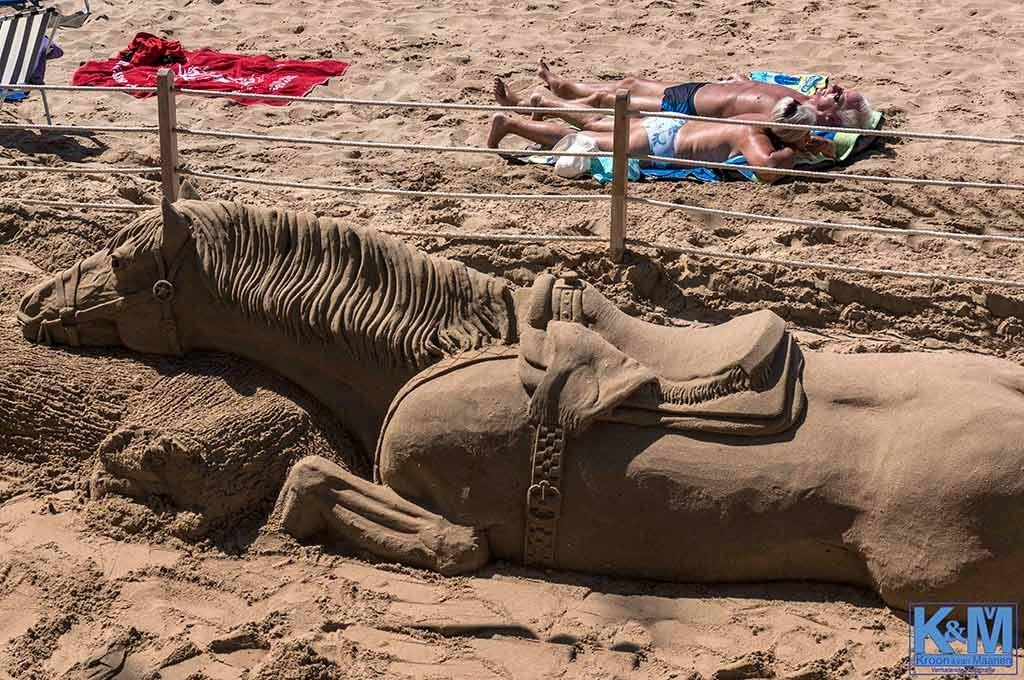 Uitgeteld zandknol
